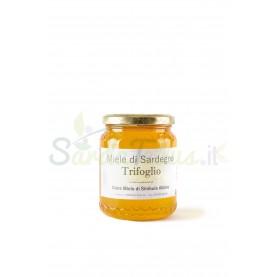 Miele di Sardegna - Trifoglio
